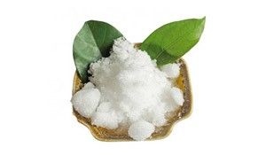 What Is Camphor Good For?