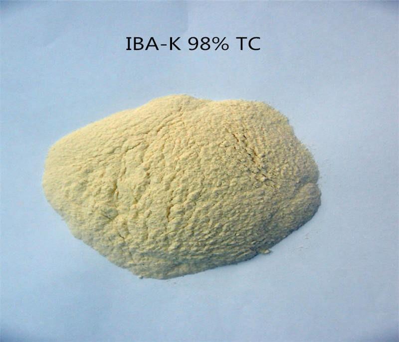 IBA-K SALT  CAS No.:60096-23-3
