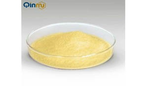 Why Food Additive Is Important?